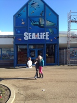 Great Yarmouth Sealife Centre